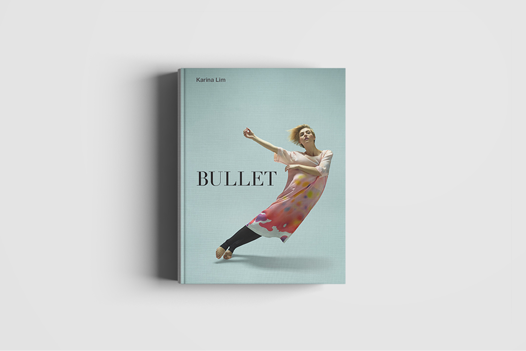 Bullet book cover